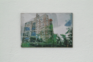 Charly Gibbs - DSCF0082.