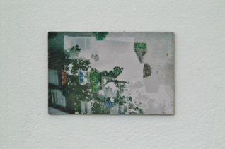 Charly Gibbs - DSCF0086. 