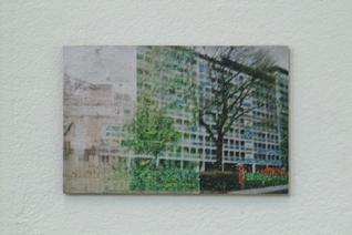 Charly Gibbs - DSCF0097 