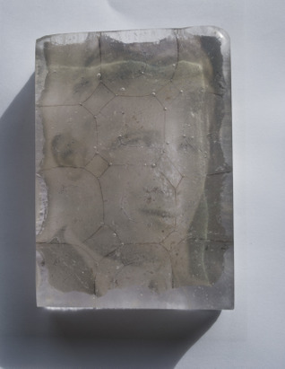 John Lynch - photographic Image embedded in glass