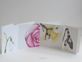 Charlotte Rebecca Sleigh - Selection of Cards