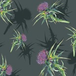 Kelly Lowe - Thistle print design from woodland collection