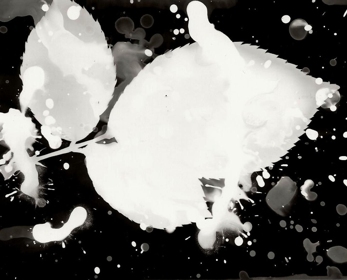 Work by Eden Atherton-Kelly