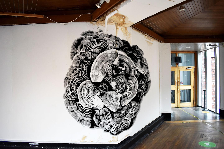 Work by Louis Neale